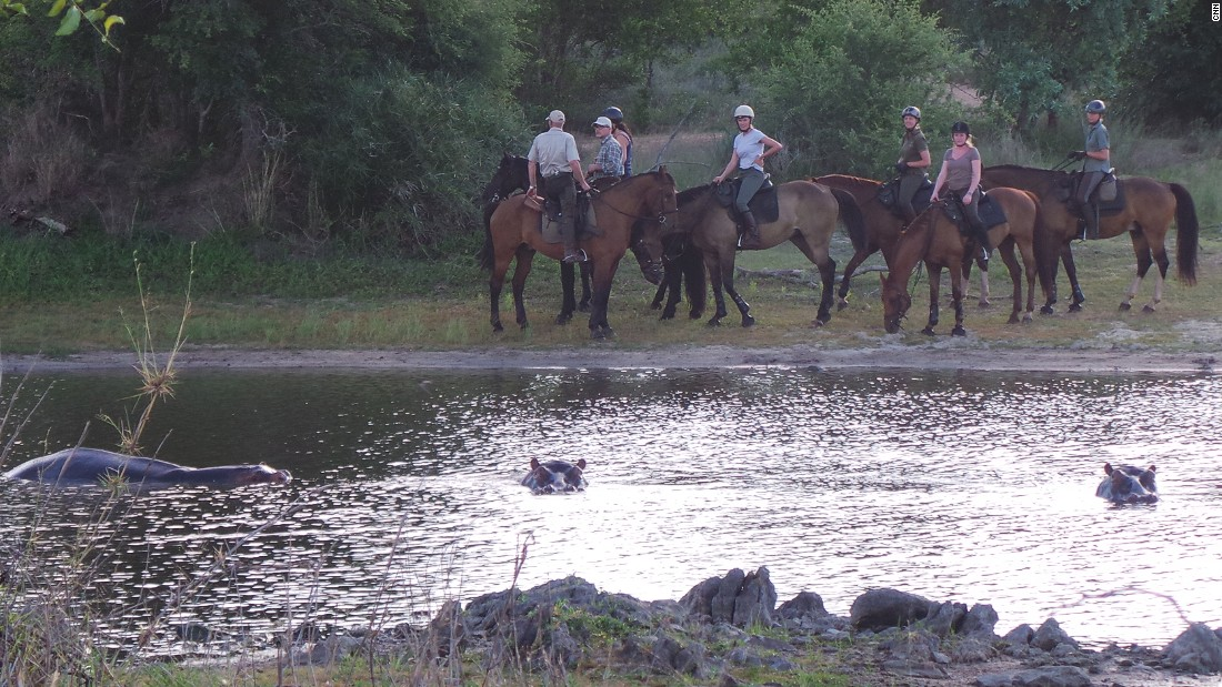 Horseback provides a perfect vantage point to watch hippos wallowing ...