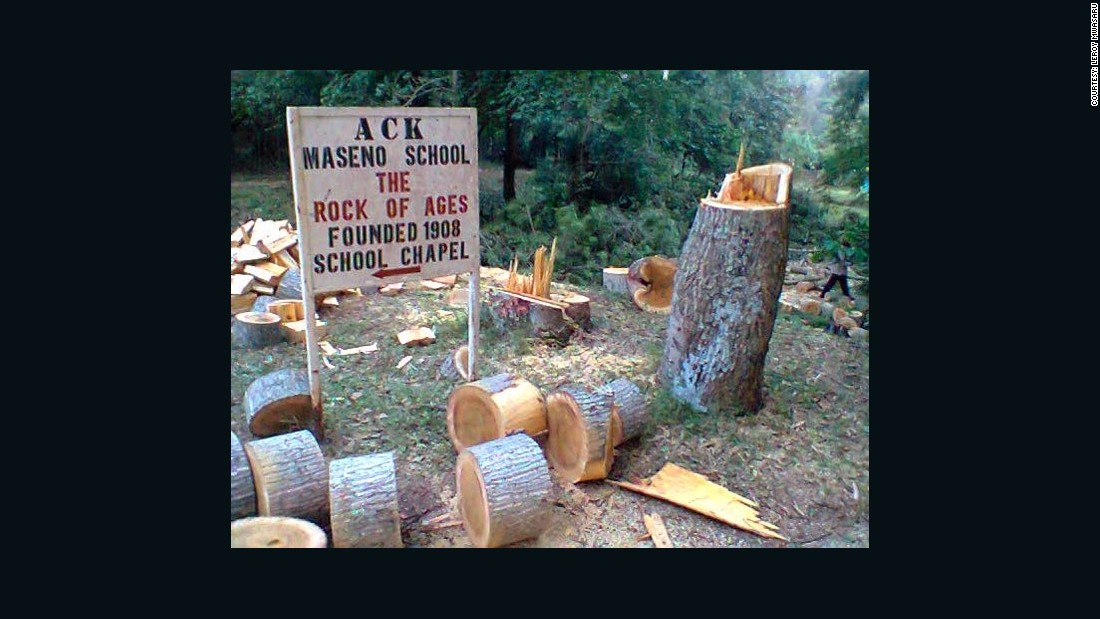 Mwasaru calculated that, per term, his school used 28 trucks of wood, or 196 tonnes to create enough energy to cook for all the students. This demand for timber caused problems with the local community who collected firewood from the same forest.