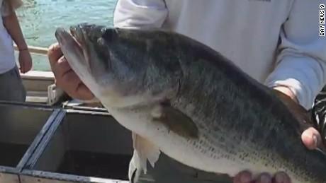 pkg supreme court fisherman ruling _00002714