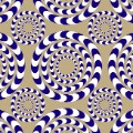 illusion spinning circles