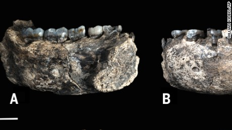 Oldest known jawbone from human genus found in Ethiopia