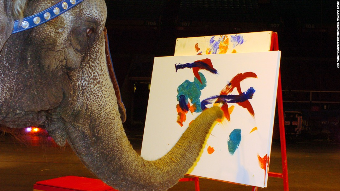 Nicole, a 31-year-old elephant, shows off her artistic talent in 2006 as she paints for children of the local Ronald McDonald House in New York.