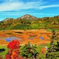 beautiful japan Koya Pond