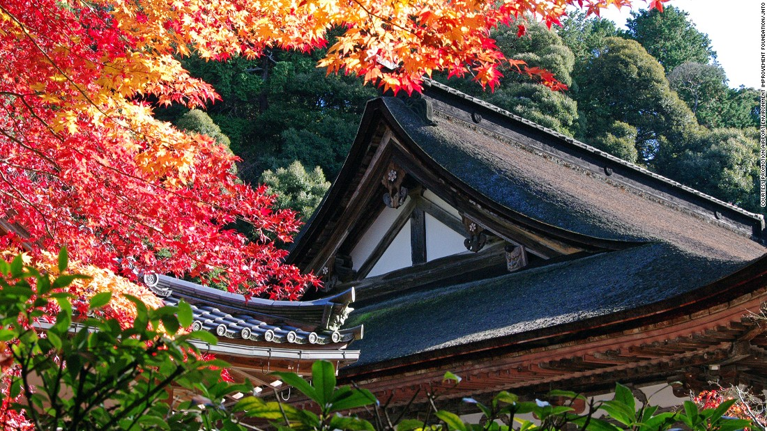 """Located in the Suzuka mountain range, Saimyoji Temple is one of a trio of ancient Tendai Buddism temples in eastern Shiga, also known as """"Koto Sanzan."""" <br />The temple is renowned for the beautiful red and orange leaves that surround it in the fall and long blooming cherry trees.<a href=""""http://www.saimyouji.com/"""" target=""""_blank""""><em><br />Saimyoji Temple<em></a></em>, 26, Ikedera, Inukami, Shiga, Japan; +81 749 38 4008</em>"""