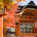beautiful japan Usa Shrine Oita-prefecture