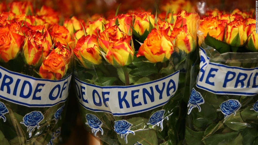 Kenya is one of the world's biggest exporters of cut flowers, accounting for around one in three flowers sold in the European Union.