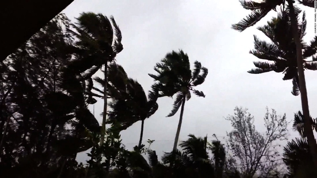 Strong winds blow trees as Pam hits Vanuatu on March 13.