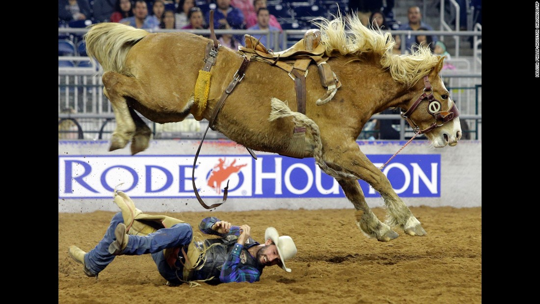Will Smith rolls out of the way after being bucked off a bronco during RodeoHouston on Sunday, March 15.
