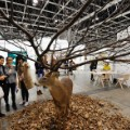 art basel hong kong deer tree