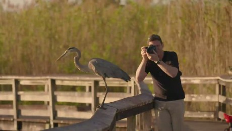 wonder list everglades behind the shot_00001312.jpg
