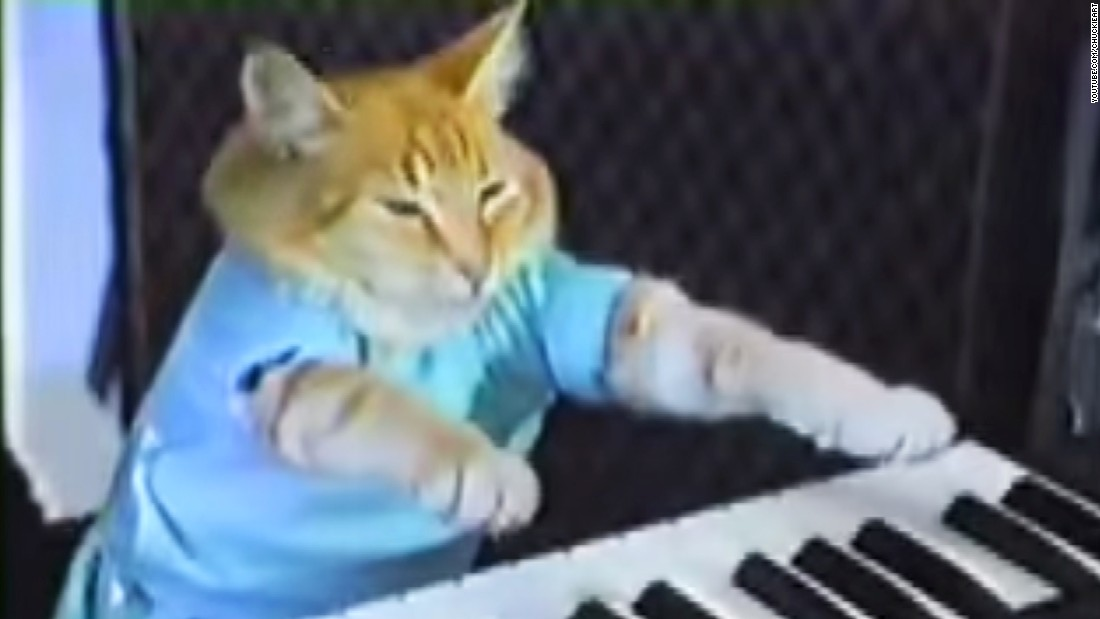 "<a href=""https://www.youtube.com/watch?v=J---aiyznGQ"" target=""_blank"">Keyboard cat</a> is an Internet meme."