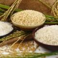 06.rice-stock
