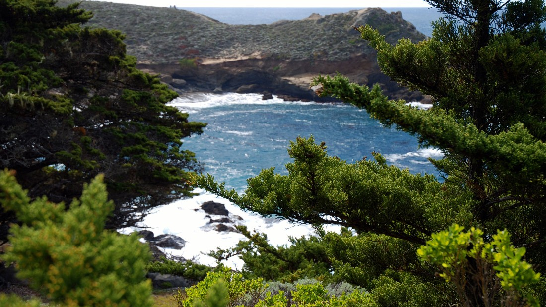 "The Point Lobos State Natural Reserve in Monterey County is popular with hikers. It's sometimes billed as the ""greatest meeting of land and sea in the world."""
