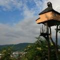 teahouse fujimori
