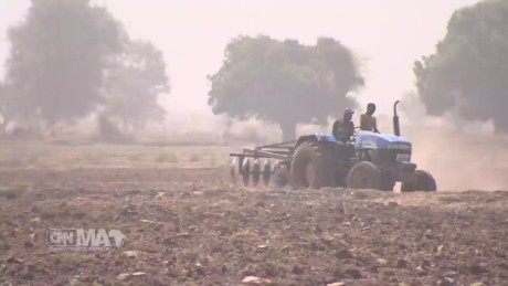 spc marketplace africa nigeria agriculture_00025418.jpg