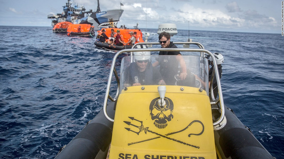 Sea Shepherd crew tow a convoy of life rafts back to the safety of their ship.