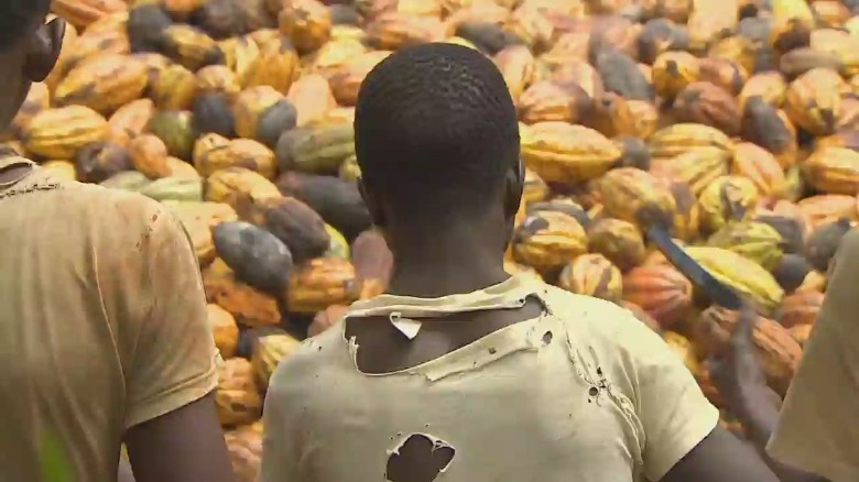 Chocolate industry tackles child slavery