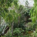 Amazing Gardens- Barbican Conservatory