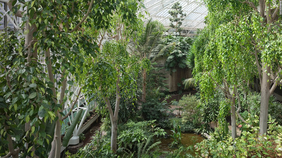 Split over two levels, this is the second largest glasshouse in London, after Kew Gardens, and is a sanctuary to more than 2,000 varieties of tropical plants.