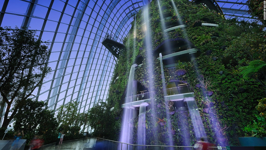 The premier attraction of Gardens by the Bay is Cloud Forest, one of two enormous conservatories. From this 35-meter-tall tower falls the world's highest indoor waterfall.