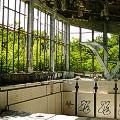 Chernobyl tourism 13