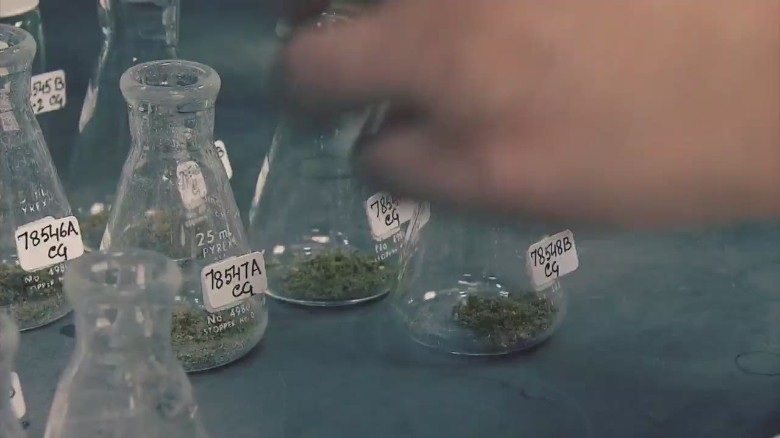 'Weed 3: The Marijuana Revolution'