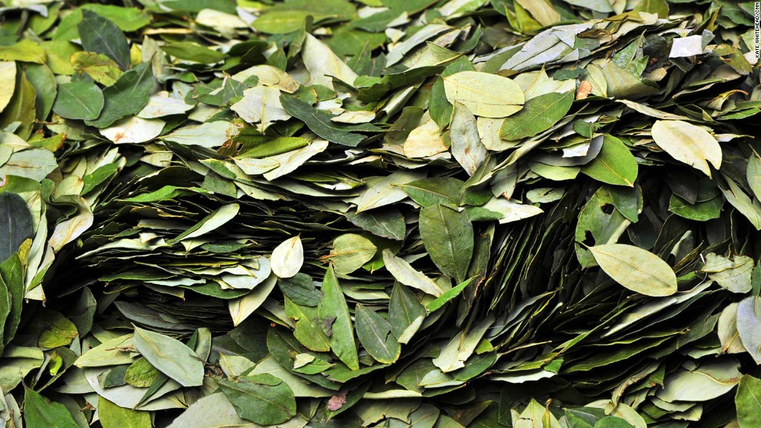 Coca leaves -- sold in small neighborhood stalls -- are a quick fix for altitude sickness. The idea is to suck up the juice by putting the leaves between your cheek and gums.