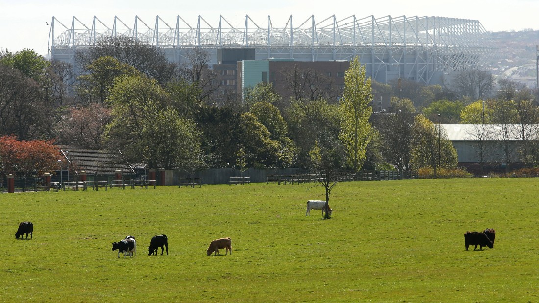 "The oft-used phrase ""football is a religion"" really does apply to Newcastle, according to Forbes. It is a one-club city, and United's home ground St James' Park dominates the skyline. Forbes says: ""It's often said we have three cathedrals in the city: the Anglican, the Catholic Cathedral and St James' Park."""