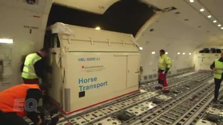 spc equestrian horse transport_00004922