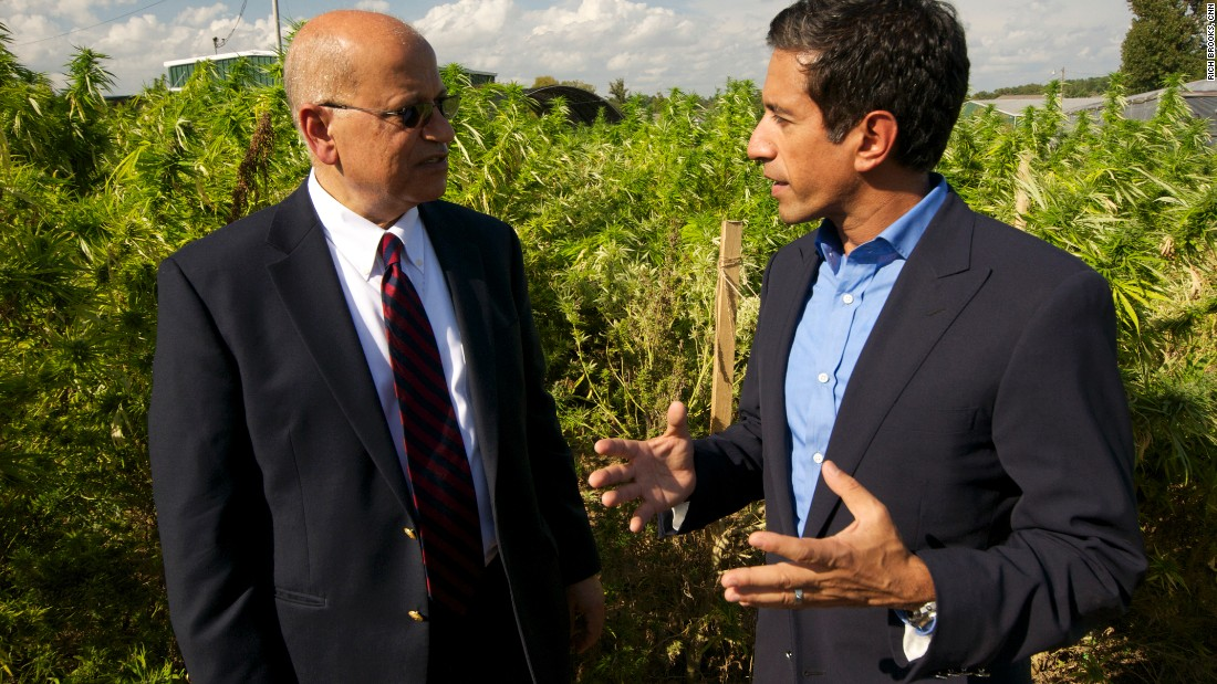 Sanjay Gupta, CNN chief medical correspondent, and Dr. Mahmoud ElSohly, the director of the Marijuana Project, tour the marijuana fields at Ole Miss. ElSohly has been in charge since 1981.