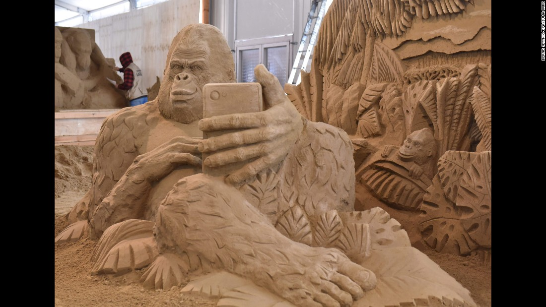 A gorilla is taking a selfie in this sand sculpture made by Ivan Zverev in Elstal, Germany.