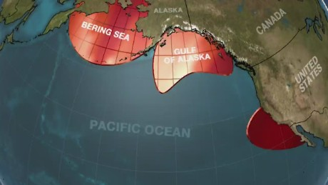 Blob Pacific Ocean Warm Waters Weather Jennifer Gray_00000915.jpg