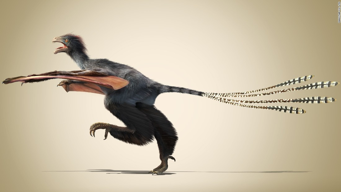 "This <a href=""http://edition.cnn.com/2015/04/30/asia/china-dinosaur-yi-qi/"">unusual dinosaur with bat-like wings</a> existed for a very short time 160 million years ago during the Jurassic Period."
