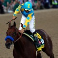 American Pharoah  kentucky derby winner