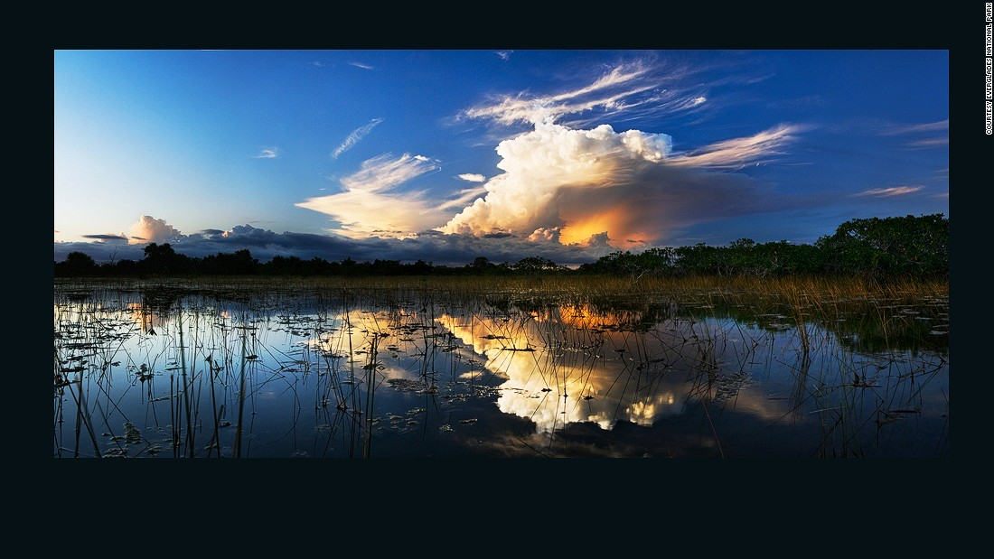 Everglades National Park was the first U.S. national park set aside for its biodiversity.