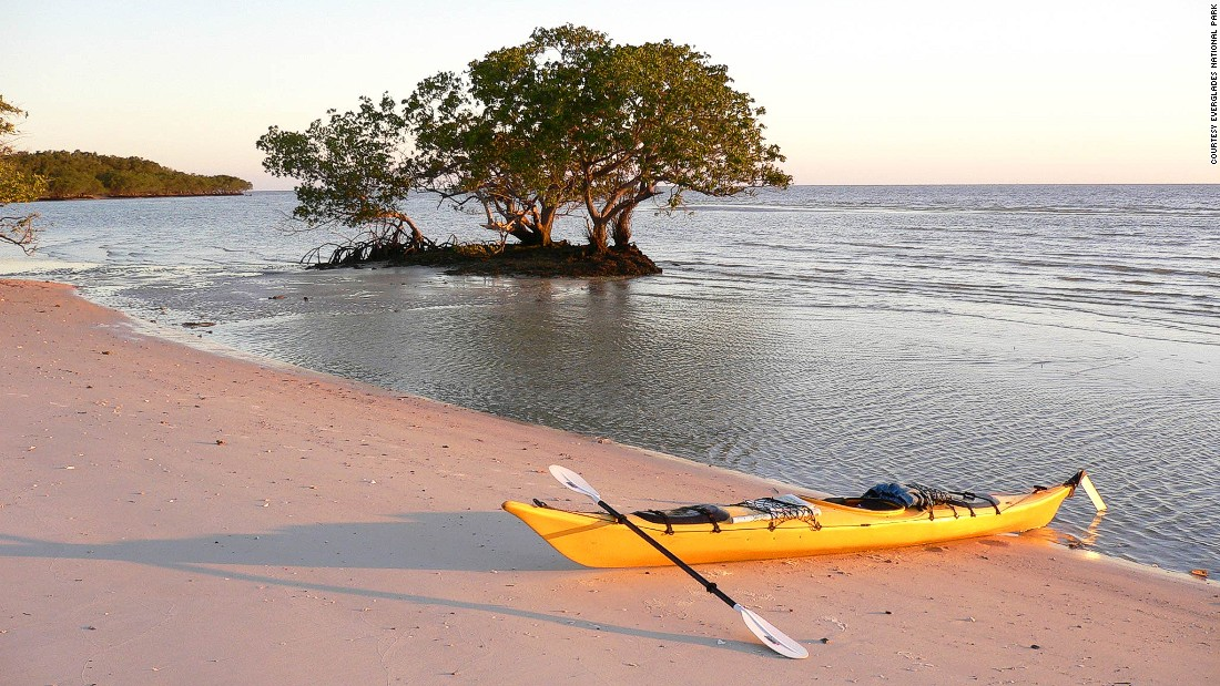 You could spend a few hours or a few days paddling among the Everglades' marshes, mangrove islands and orchid-lined canals.