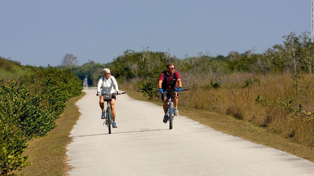 Shark Valley's 15-mile tram and bike loop cuts through a flat-as-a-board freshwater ecosystem of sawgrass marsh and tree islands. Alligator sightings are almost guaranteed.