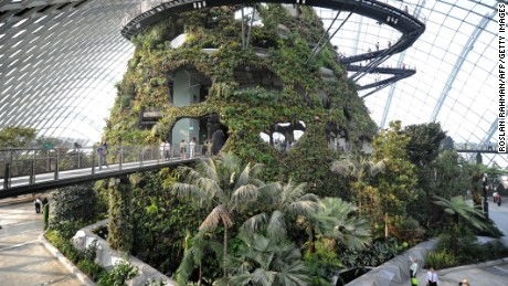 Situated at the downtown Marina Bay, the Gardens by the Bay feature two cooled conservatory domes including the magical Cloud Forest (pictured). The gardens contain 222,000 plants from almost every continent.