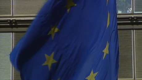 EU flag in Brussels, February 2008