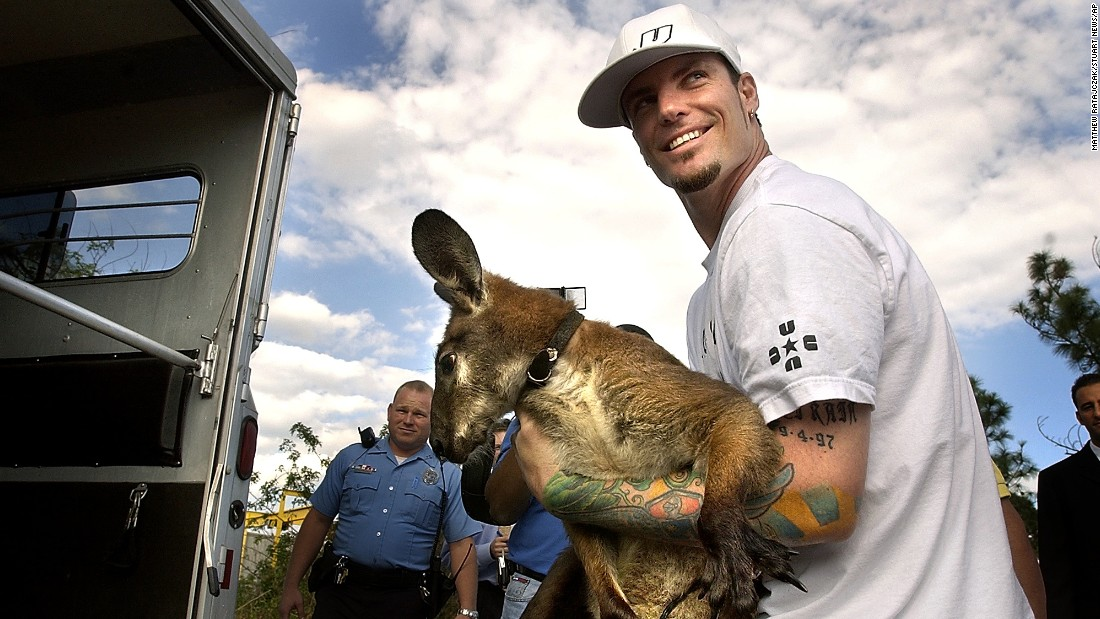 "Entertainer Robert Van Winkle, formerly known as Vanilla Ice, carries his pet wallaroo, ""Bucky"", in Port St. Lucie, Florida, on November 19, 2004. Van Winkle also owns a pet goat, ""Pancho"", who allegedly <a href=""http://jacksonville.com/tu-online/apnews/stories/112004/D86FRIDO0.shtml"" target=""_blank"">nudged a backyard door open with his head in 2004,</a> enabling the two animals to escape and wander the streets."