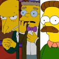 05 simpsons actors