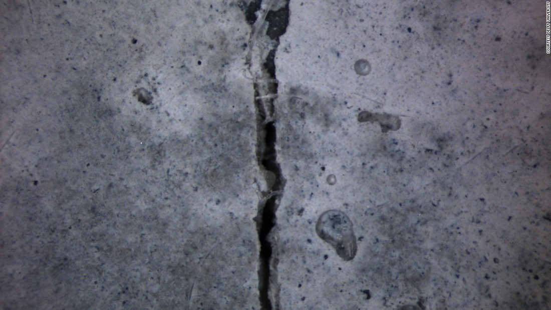 Here is a test: this slab of bioconcrete has just been cracked...