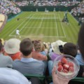 Wimbledon strawberries and cream spectators