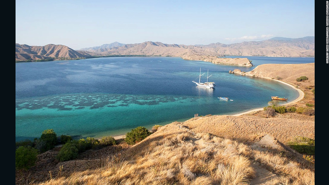 Thanks to nutrient-rich cold water that flushes into Komodo National Park from the Indian Ocean, the marine life is kept well fed.