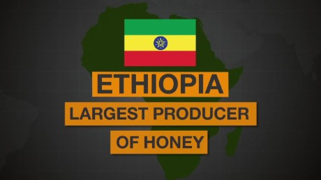 ethiopia honey spc africa view_00001330