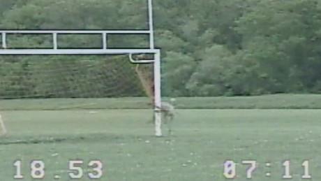 cnnee vo police free deer in soccer _00002028