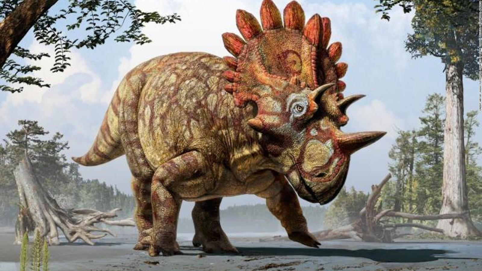 hellboy dinosaur is like triceratops only frillier cnn com