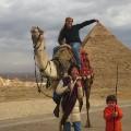 Egypt Wahl irpt