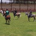 Baku Chovgan European Games Karabakh horses