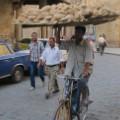 irpt egypt breadseller